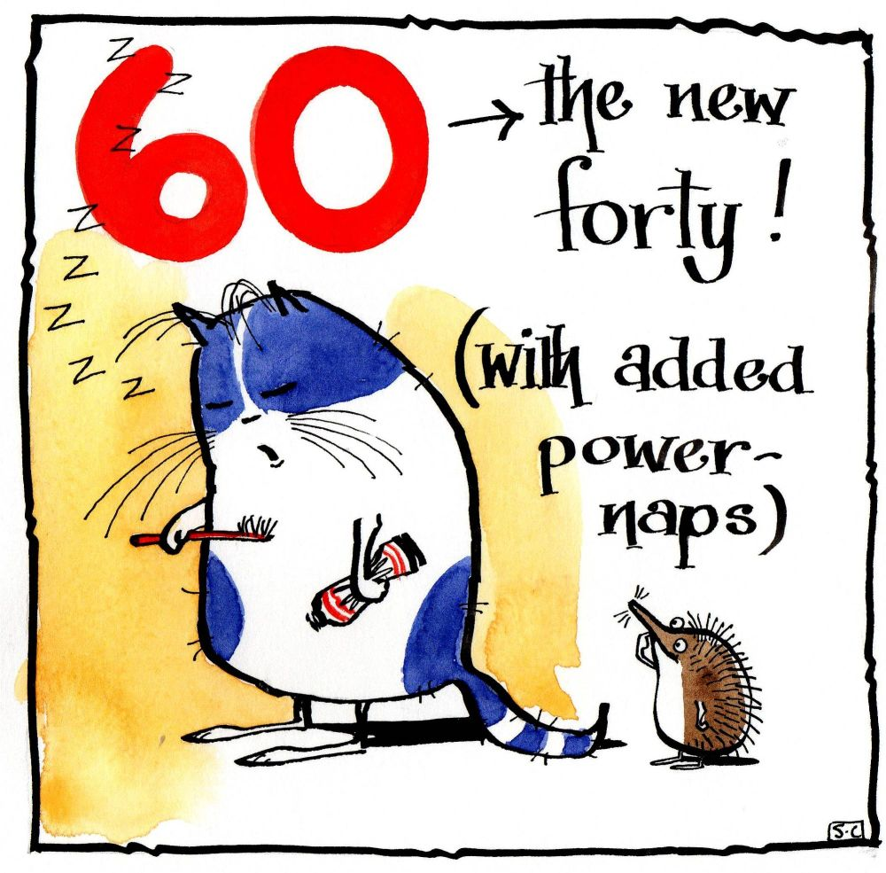 Funny 60th Birthday card with cartoon cat & hedgehog with caption:60 - The