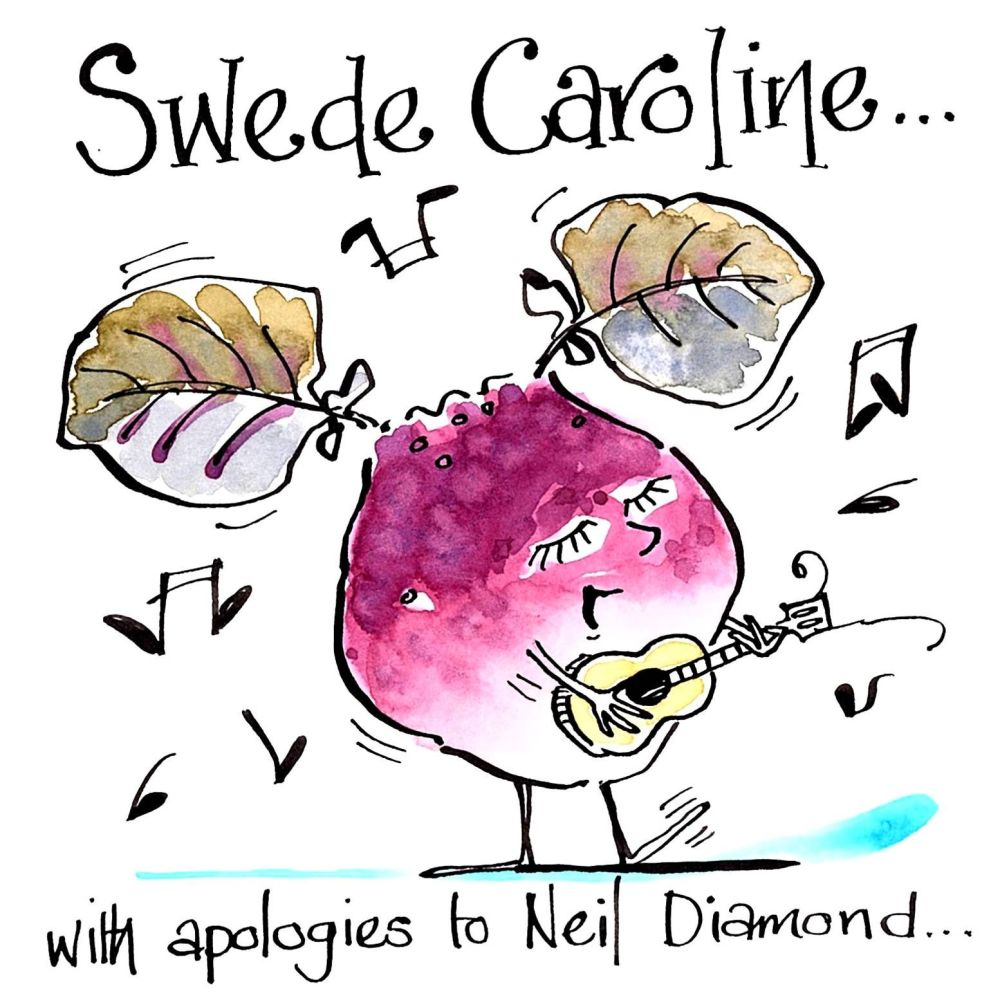 Funny Greeting card for music lovers cartoon of a swede/turnip playing guit