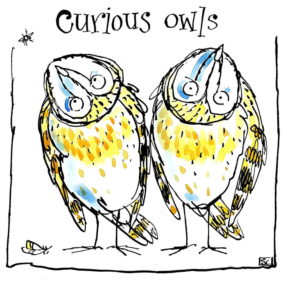 Funny greeting card with cartoon owls and caption: Curious Owls