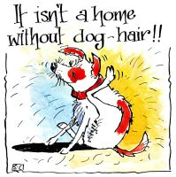 It's Not a Home Without Dog Hair!