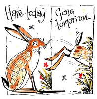 Hare Today - Gone Tomorrow