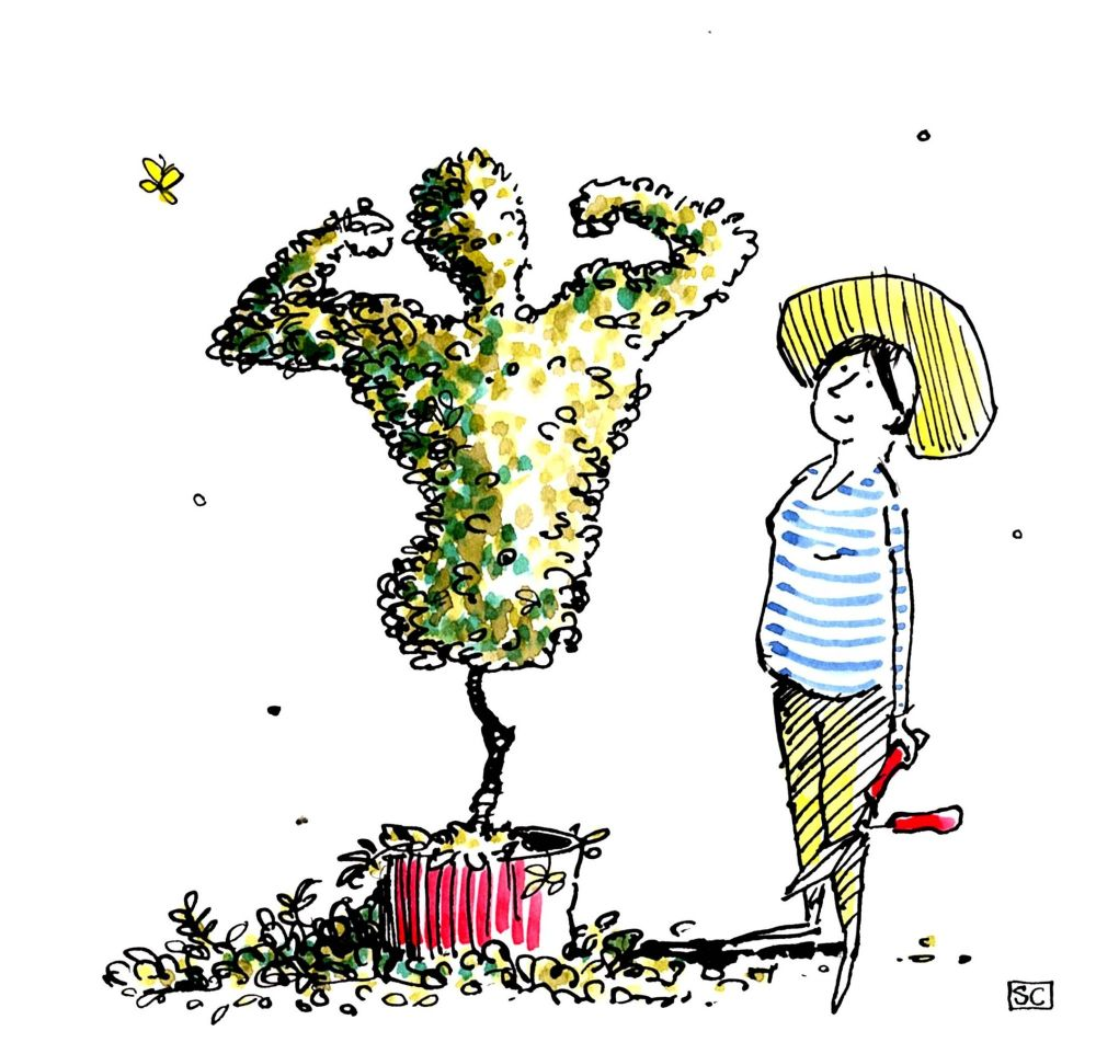 Funny Lady Gardener's Card - cartoon lady in sun hat admires her male torso