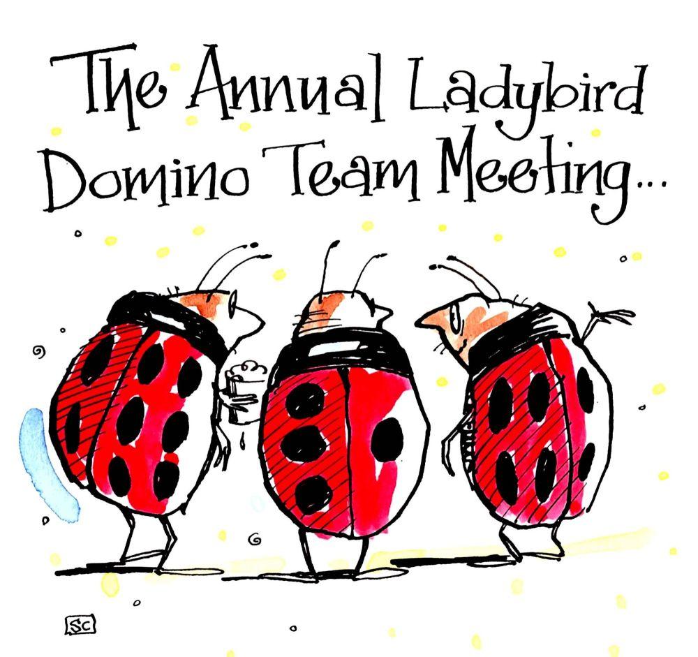Funny Birthday card with 3 ladybirds with caption: The Annual Ladybird Domi