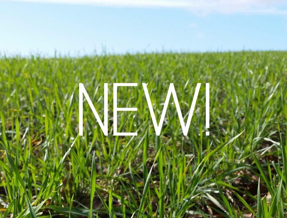 <!-- 001 -->New