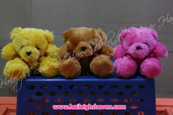 BEAR-03 (4-inch): Furry Bear