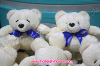 BEAR-02 (4-inch): Teddy Bear