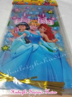LOOT BAGS (LONG, NO HANDLE): DISNEY PRINCESS