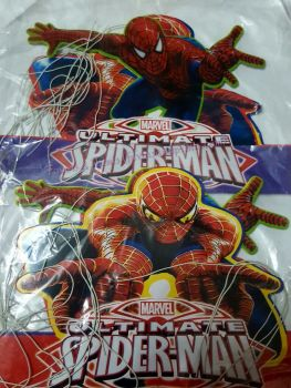 PARTY HATS (Die-Cut, 10s): SPIDERMAN