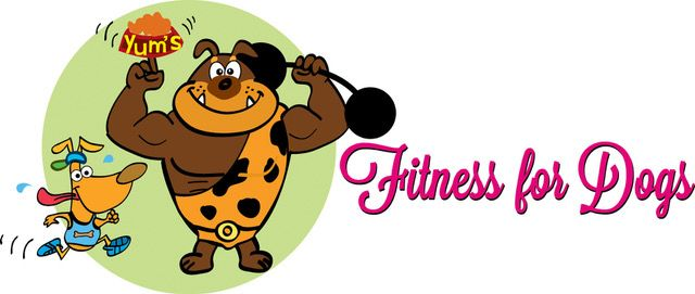 fitness for dogs, dog walking leamington spa
