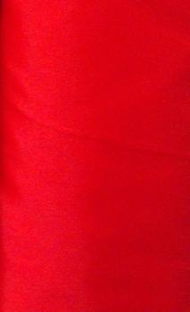RED DRESS LINING