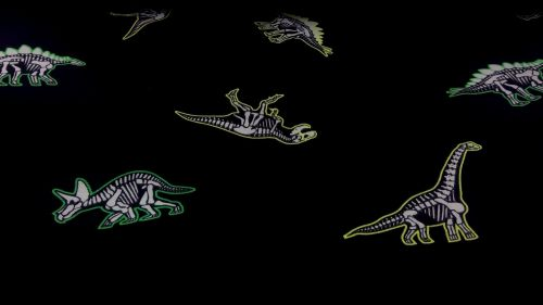 BLACK GLOW IN THE DARK DINO COTTON JERSEY