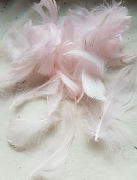 Pink Feathers (approx .25 per pack)