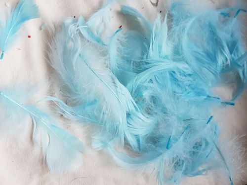Blue Feathers (approx .25 per pack)