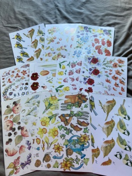 Card Making (Pack of 10 as shown)   CM04