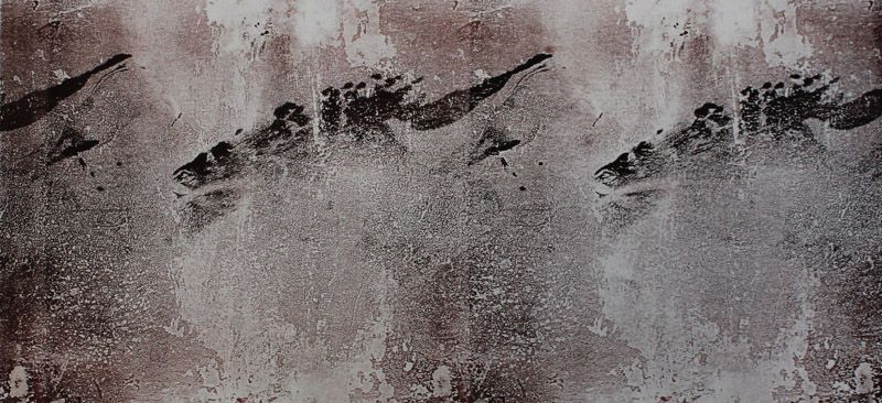 Echo #14 - Monoprint on off-white Japanese paper (image 200 x 430cm on a2 paper)