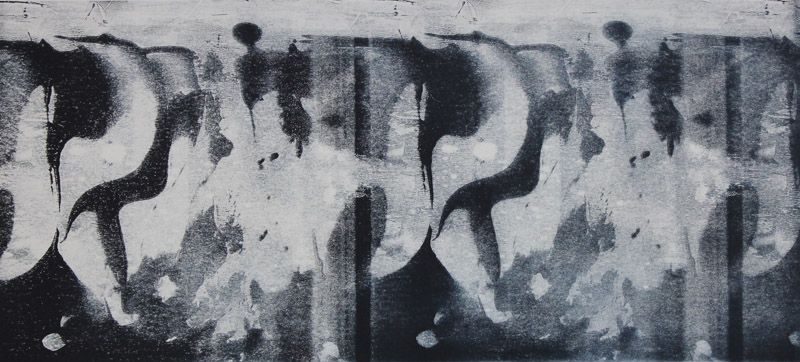 Echo #4 - Monoprint on off-white Japanese paper (image 200 x 430cm on a2 paper)