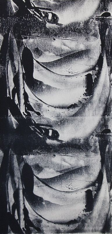 Echo #38 - Monoprint on off-white Japanese paper (image 430 x 200 mm on a2 paper)