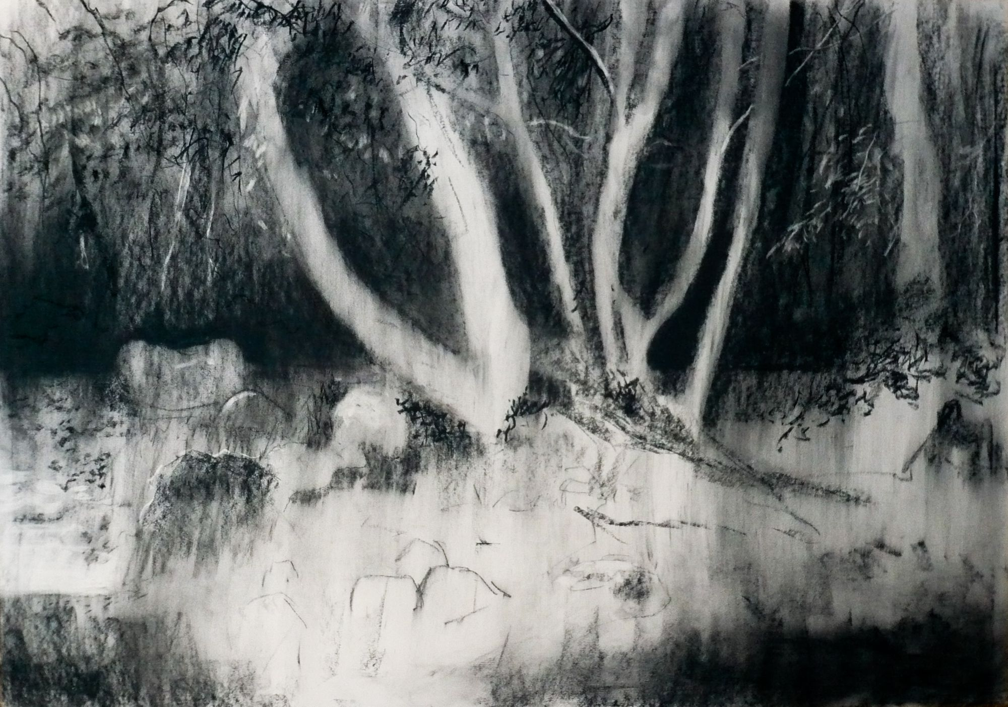 Shaugh Prior #1 - Charcoal on Surrey cartridge paper (594 x 841 mm)