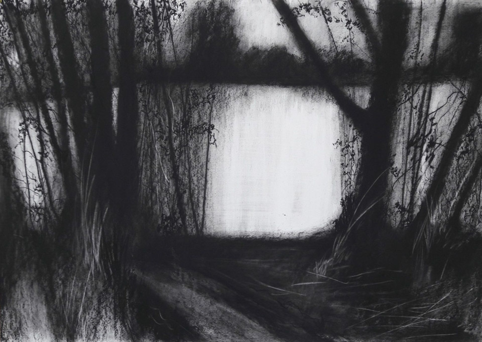 Rydal Water #1 - Charcoal on cartridge paper (594 x 841 mm)
