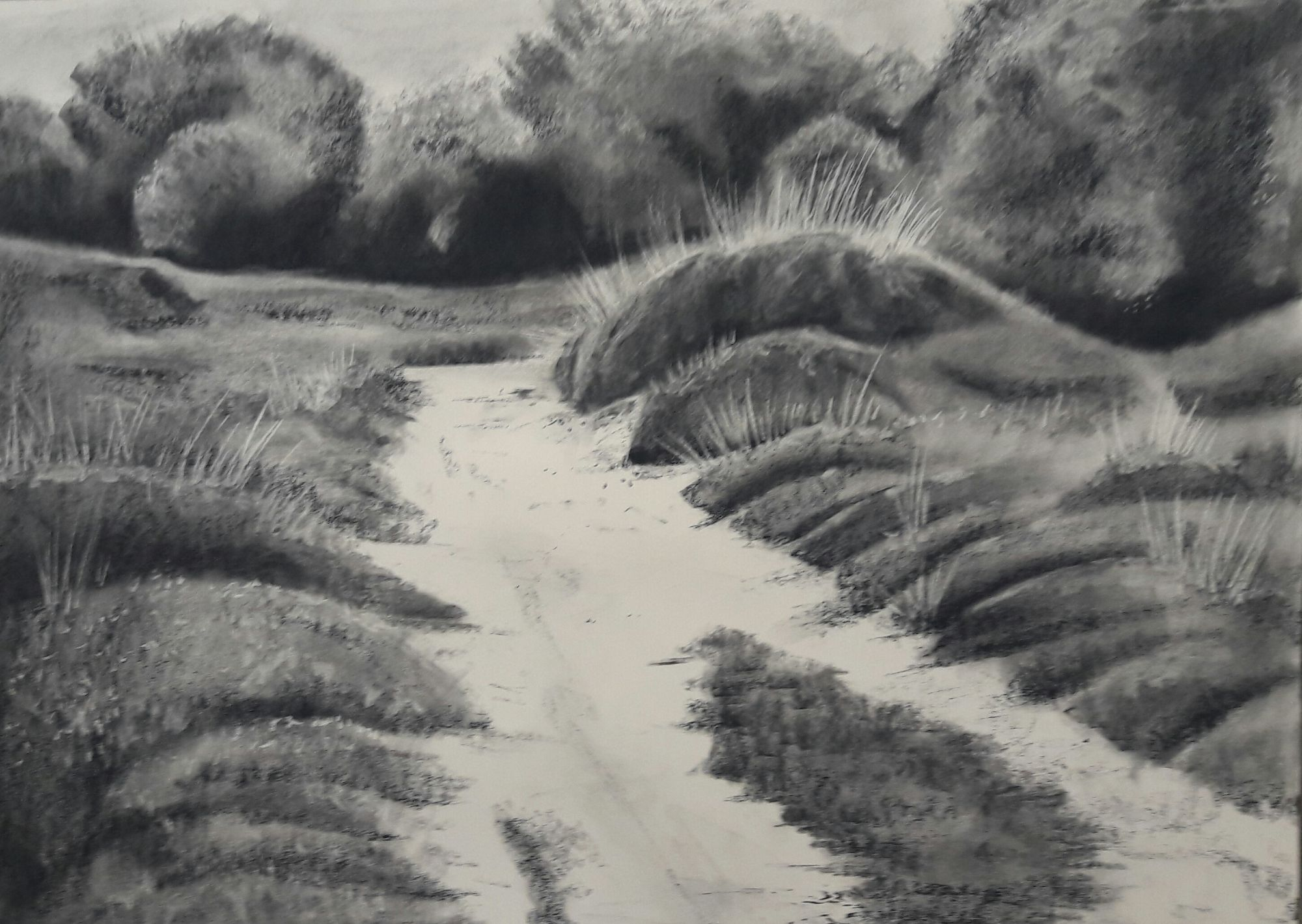 Studland #1 - Charcoal on Surrey cartridge paper (594 x 841 mm)