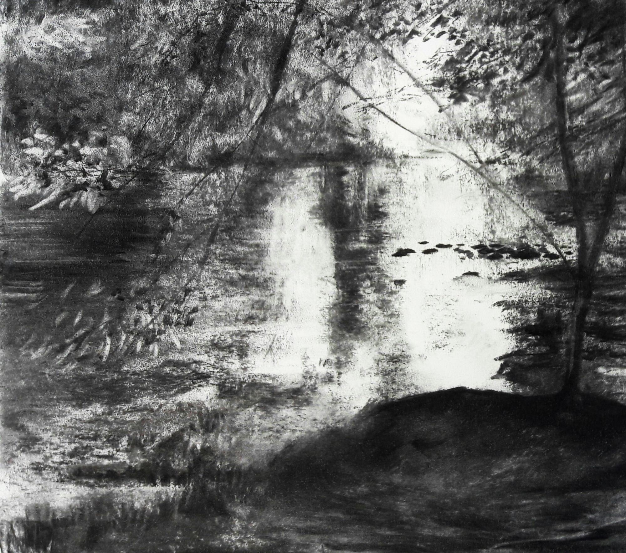 Hembury Woods #1 - Charcoal on cartridge paper (420 x 594 mm)