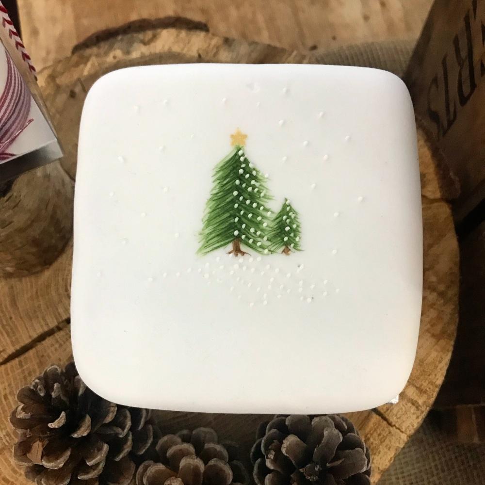 Handpainted Iced Christmas cake - midi 900g