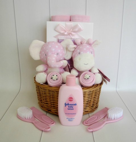 Twin Baby Girl Gift Basket