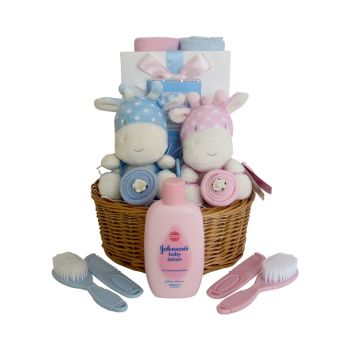 Twin Baby Boy & Girl Gift Basket
