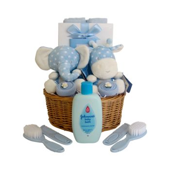 Twin Baby Boy Gift Basket
