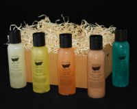 <!--024-->Body Wash Or Hand Soap Set
