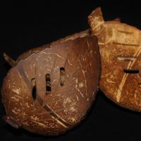 Coconut Shell Soap Dish With Soap Bar