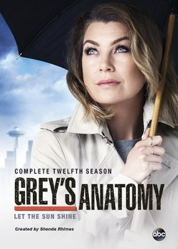 Grey's Anatomy - Season 12 - DVD