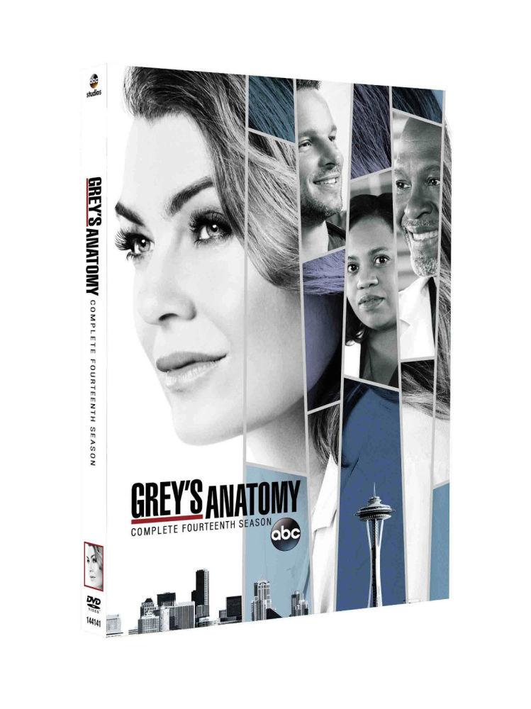 Grey's Anatomy - Season 14 - DVD