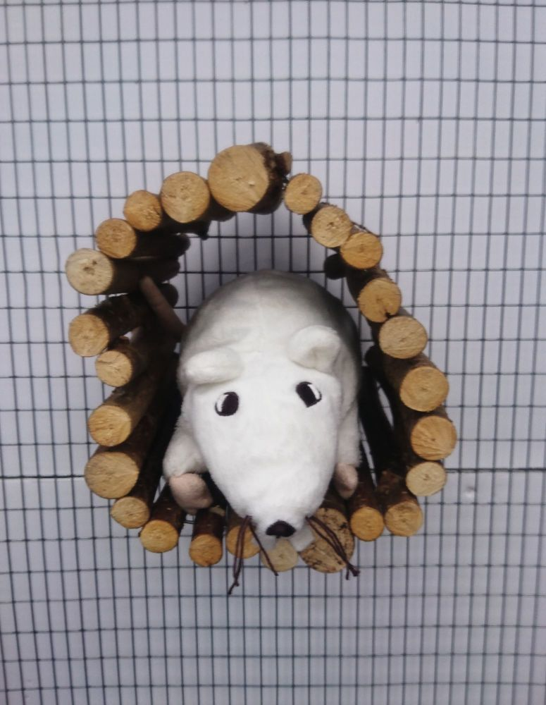 Bolted tunnel hidey - cage accessory