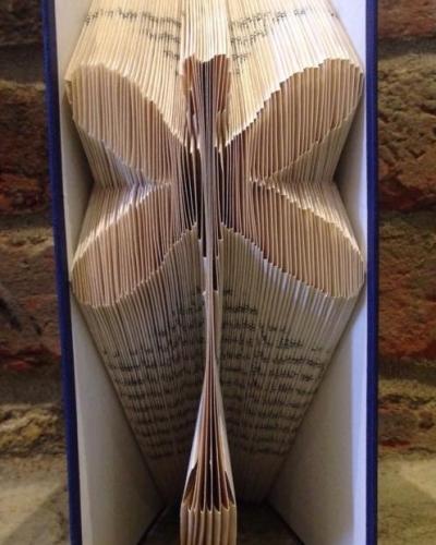 Book Folding Pattern 'Dragonfly' (154 Folds)