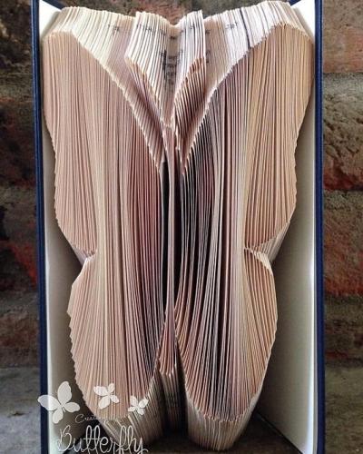 Book Folding Pattern 'Butterfly' (289 Folds)