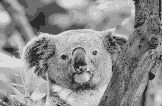Layered Paper Cutting Template - Koala 3 - 8 layers