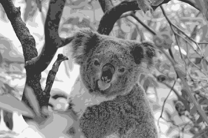 Layered Paper Cutting Template - Koala 1 - 8 layers