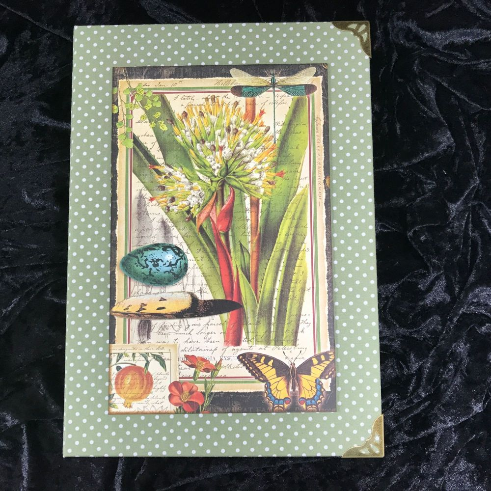 Natures Notebook X-Large Handmade Journal (Green with Cream Polka Dots)