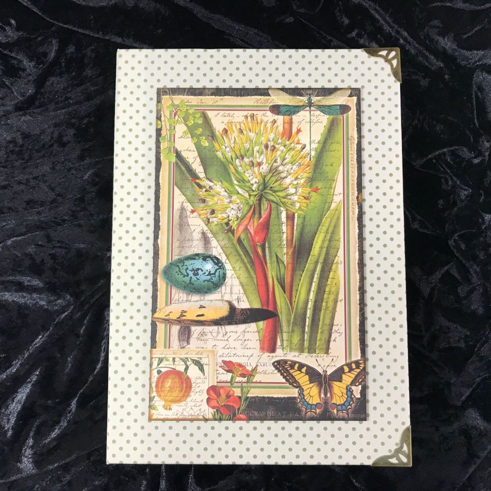 Natures Notebook X-Large Handmade Journal (Cream with Green Polka Dots)