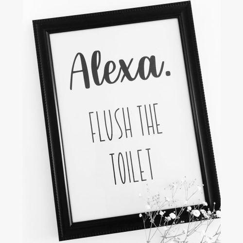 Alexa. Flush The Toilet