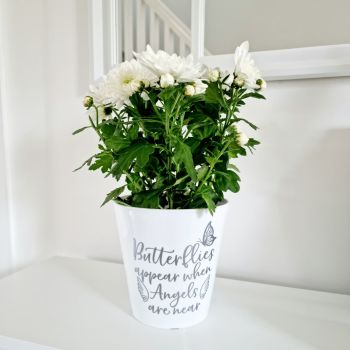 'Butterflies Appear When Angels Are Near' Planter Pot