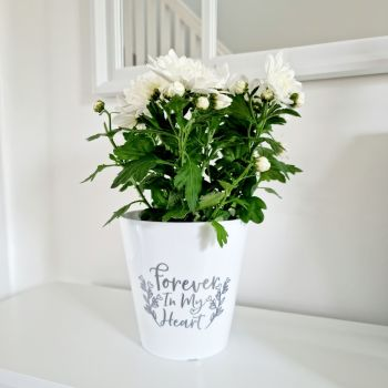 'Forever In My Heart' Planter Pot