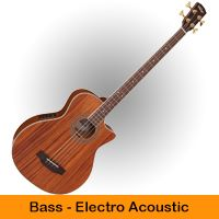 Bass - Electro Acoustic