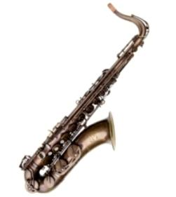 Trevor James 38SC-T569B Signature Custom Tenor Saxophone - Unlacquered, Big