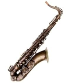 Trevor James 38SC-T569B Signature Custom Tenor Saxophone - Unlacquered, Big Bell