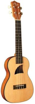 VOTED BEST TRAVEL UKE - Eddy Finn Travel Concert Ukulele
