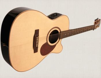 400 Series Electro Acoustic Guitar