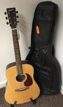 Segovia D200 Acoustic Guitar