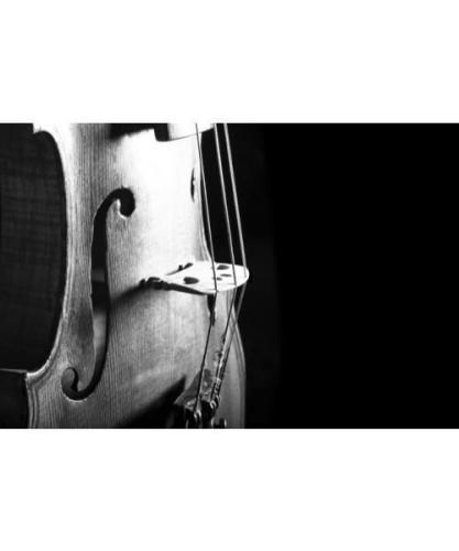 Music Gifts Violin Greeting Card
